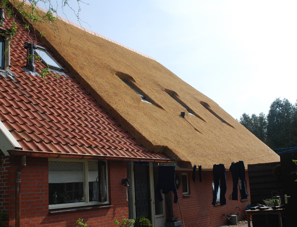 Rietdekkersbedrijf strijker drenthe wijster rieten dak
